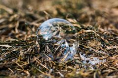 Bubble outdoors on a chilly winter day. Soap bubble outdoors on a chilly winter day royalty free stock images