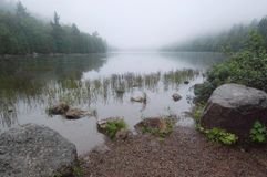 Bubble Pond, Acadia. Bubble Pond on a still and foggy summer morning in in Acadia National Park, Maine Royalty Free Stock Photography