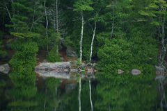 Bubble Pond Reflection. Image of Bubble Pond in Acadia National Park Maine Stock Photography