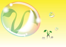 Bubble protect plant Royalty Free Stock Images
