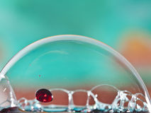 Bubble red Royalty Free Stock Images