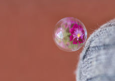 Bubble and reflection Stock Photos
