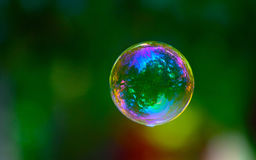 bubble with a reflection of the forest Royalty Free Stock Image