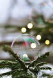 A bubble sitting on a fir-tree. Branch Royalty Free Stock Image