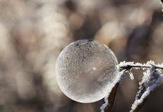 Bubble, Soap Bubble, Ball, Frost Royalty Free Stock Photo