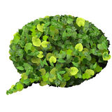Bubble speech made from green leaves. Stock Photography
