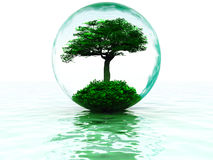 Bubble With Tree Royalty Free Stock Photos