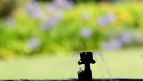 Bubbler άρδευσης κήπων δοχείο λουλουδιών ποτίσματος απόθεμα βίντεο