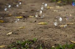 Bubbles. Soap bubbles float above ground Stock Image