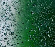 Bubbles. In a plastic bottle stock photo