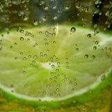 Bubbles. Lime in soda with bubble in focus royalty free stock photo