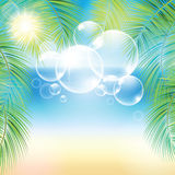 Bubbles above the sand beach and the palm branches Royalty Free Stock Photo