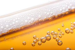 Bubbles in beer. Foam and bubbles in beer Stock Photos
