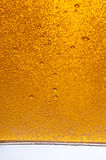 Bubbles of the beer. Royalty Free Stock Photography