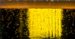 Bubbles in Beer Mug stock video