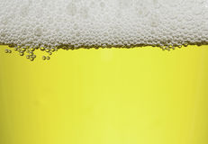 Bubbles with Beer water Stock Photo