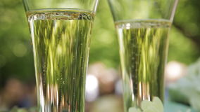 Bubbles of champagne in wedding glasses. Two glasses of champagne celebration or date stock video