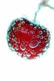 bubbles Cherryet royaltyfri fotografi
