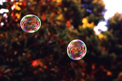 Bubbles. Colourful bubbles in a simple, blurred out backdrop stock photos