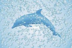 bubbles delfinen Fotografering för Bildbyråer