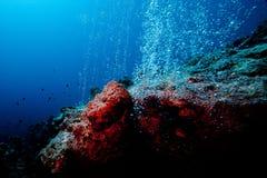 bubbles den undervattens- geyseren Royaltyfria Bilder