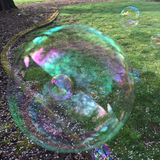 Bubbles floating across the lawn Stock Photography