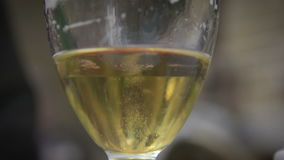 The bubbles floating up in the liquid of drink. stock video