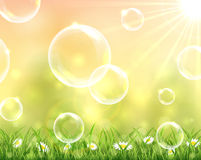 Bubbles flying over the grass Stock Photos