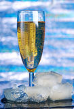 Bubbles in a glass of champagne Stock Photo