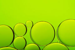 Bubbles on green abstract background Stock Photography