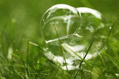 Bubbles on green grass Royalty Free Stock Images