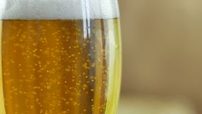 Bubbles of light crafting beer from lolod and hops brewed in a private brewery in a glass in slow motion close-up 4k stock video
