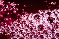 Bubbles on a red and pink liquid macro. Bubbles on a red and pink liquid close Stock Images