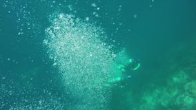 Bubbles rise under water stock video footage
