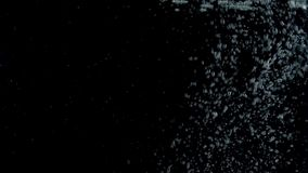 Bubbles rising to the surface on black backgrounds. Slow motion stock video footage