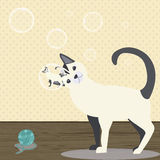 Bubbles. Room air bubbles cute cat curiosity. One bubble is reflected in the image Stock Photos