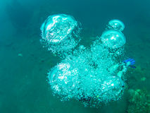 Bubbles from a scuba diver Royalty Free Stock Photography