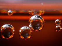 Bubbles in Soft Drink Stock Image