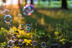 Bubbles in the sun Stock Photos