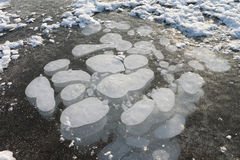 Bubbles under ice, formation of ice on the river Royalty Free Stock Photography