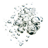 Bubbles of water over white background. Transparent bubbles of water on white background Stock Photography
