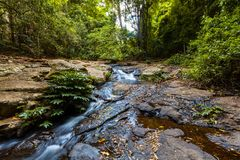 Bubbling creek in lush rainforesт. Bubbling creek in lush rainforest. Lamington National Park, QLD, Australia royalty free stock photography