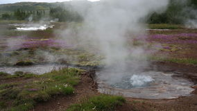 Bubbling geysers Royalty Free Stock Images