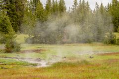 Yellowstone national park landscape. Geothermal activity, hot thermal springs with boiling water and fumes stock photography