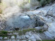 Bubbling and steaming hot spring, Furnas, The Azores. Bubbling hot spring with steam at the village of Furnas, Sao Miguel island, The Azores stock photos