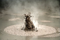 Bubbling mud Stock Photography