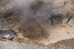 Bubbling Mud Hole in Yellowstone Stock Photo