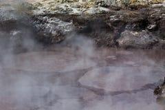 Bubbling Mud Pool - New Zealand Royalty Free Stock Image