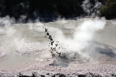 Bubbling mud pool Stock Image