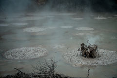 Bubbling Mud releasing Hydrogen Sulphide Gas. Geothermal Activity in Waitapu, New Zealand Royalty Free Stock Photo